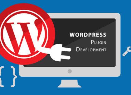 WordPress plugin development in Kenya | CodeTribe Kenya